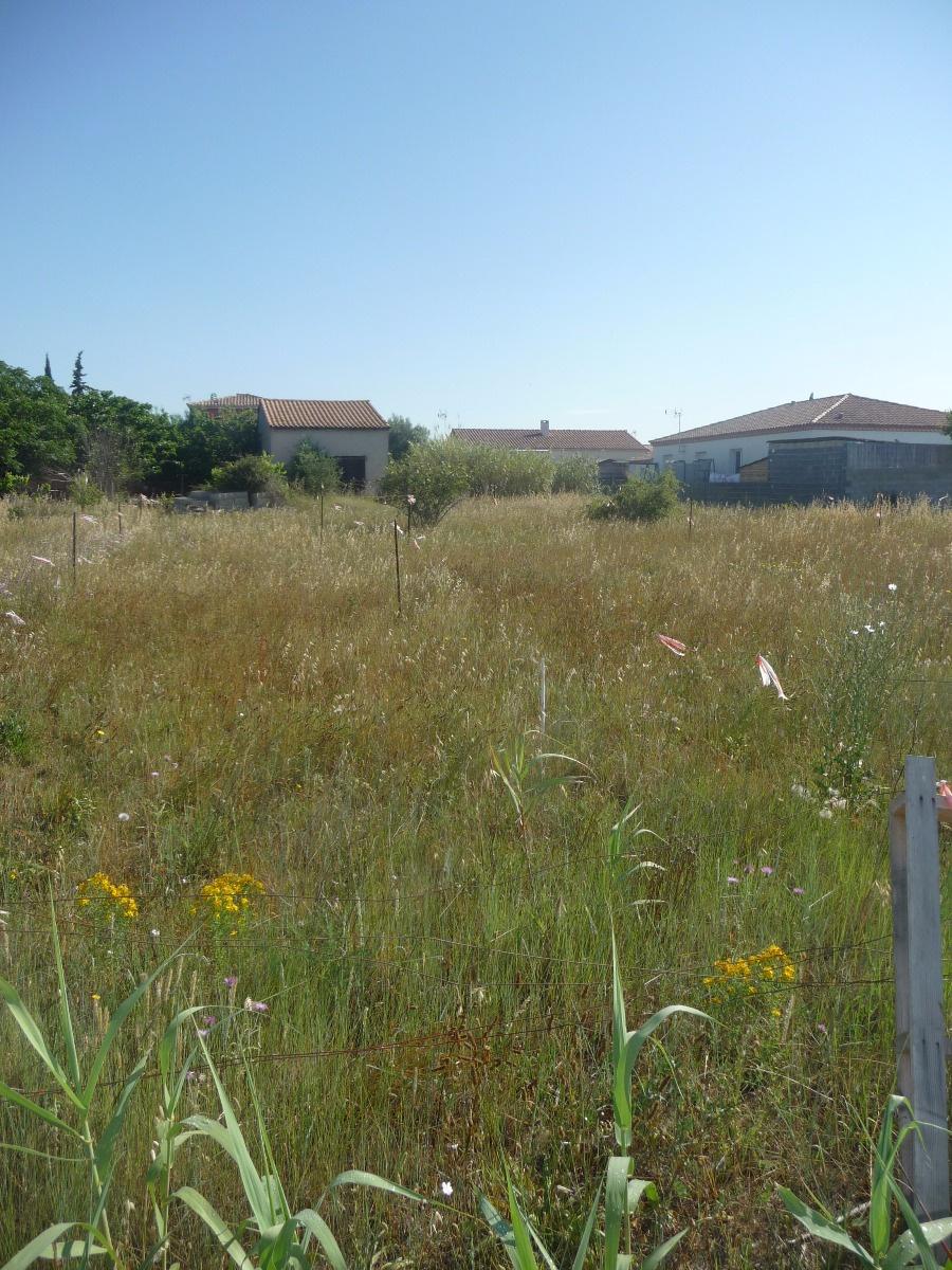 Vente bessan dans un lotissement terrain constructible de for Prix des terrains non constructibles